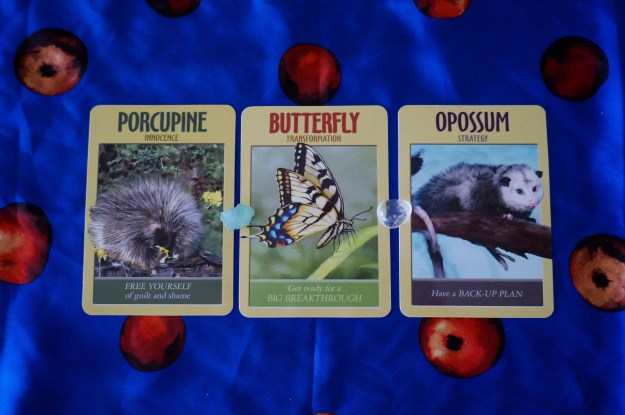 Power Animal Oracle Cards - By Steven D. Farmer, PhD